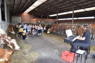 Eindelijk weer op uitstap: rusthuisbewoners zingen liedjes tussen de koeien