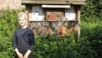 Gastvrije gemeente gaat bijenhotels plaatsen