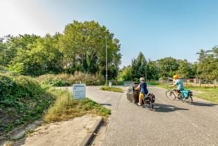 """Online petitie kaart kaalslag aan: """"Stop de bomenkap aan Oude Antwerpsebaan, het is een ramp voor de natuur"""""""