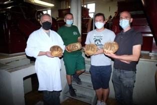Boer, maalder, bakker en hogeschool slaan handen in elkaar en dat levert uniek brood op, gemaakt van 'Zeeuwse witte'
