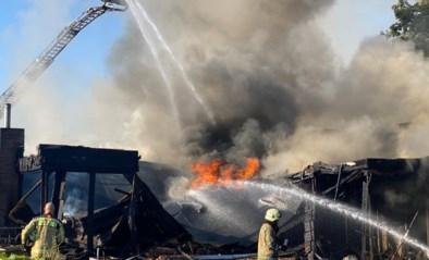 Veertien huizen beschadigd en brandweerman lichtgewond bij brand in kapsalon in Lanklaar