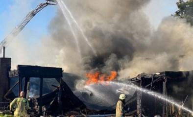 Uitslaande brand in Lanklaar vermoedelijk door kortsluiting in gsm-lader: enorme rookwolk