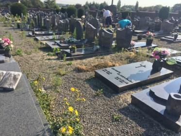 Vrijwilligers wieden tussen de grafstenen