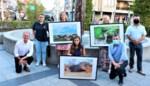 Christa Matthys wint fotowedstrijd van Comité voor Initiatief