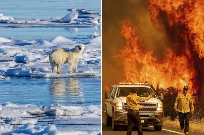 Terwijl iedereen het over corona heeft, scheuren gletsjers af, brandt twee keer België af en rukt oud virus op