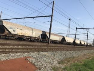 Lek in goederenwagon: treinverkeer even stil