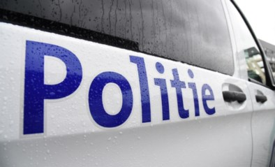 Politie breekt illegale raveparty op in maisveld in Desteldonk: vijftigtal feestvierders krijgt boete van 250 euro