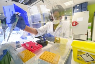 Alarmdrempel overschreden: Kempen tellen 187 nieuwe besmettingen in een week