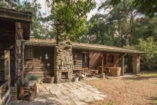 """Weekendhuisjes en groene stekjes plots weer razend populair: """"72 uur in de natuur verlaagt stressgehalte met 70%"""""""