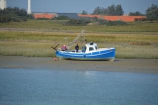 Schipper van vissersbootje vaart zich vast in havengeul