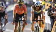 """Greg Van Avermaet is duidelijk over de rolverdeling bij de Belgen op het WK: """"Van Aert staat drie treden hoger dan ik"""""""
