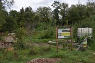 Inwoners Beersel kunnen mee bouwen aan Voedselbos