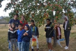 Fruitpluk in de boomgaard van het kasteel