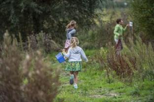 Veiliger oversteken in Bergmolenbos voor wandelaars en amfibieën