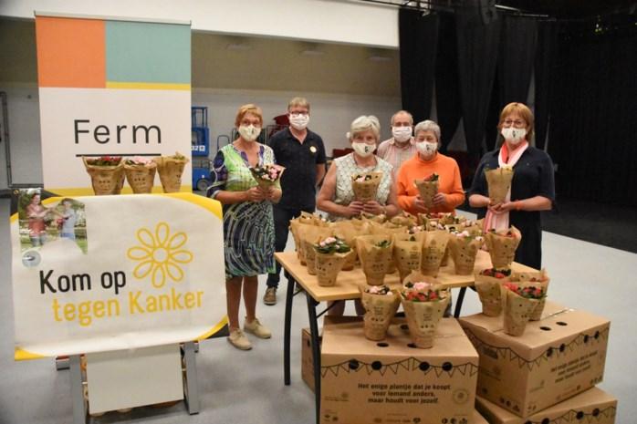 Leeuw verkoopt 800 azalea's voor Kom op tegen Kanker