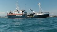 Reddingsschip Alan Kurdi met 125 migranten mag in Italiaanse haven aanmeren