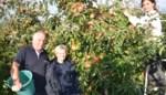 """Jean-Paul kweekt al dertig jaar fruit in 't Sternveld: """"Kleinschalig en rechtstreeks aan de klant, korter wordt de keten niet"""""""
