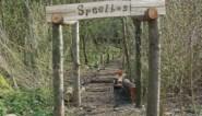 """Gemeente investeert fors in """"een boom voor elke Stadenaar"""""""