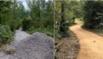 Bekritiseerde werken aan wandelpaden in Hertigembos zijn klaar