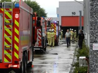 Brand bij bedrijf in Minderhout