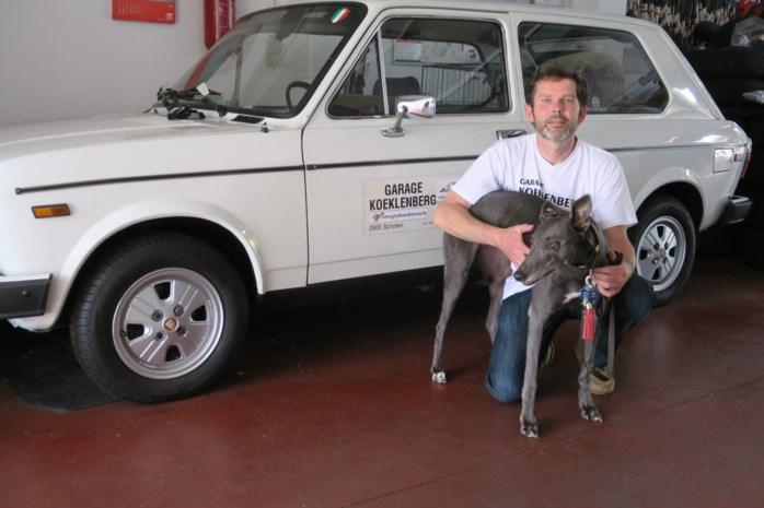 """Garagist ontfermt zich over 'gedumpte' greyhounds: """"Deze lieve dieren verdienen een beter lot"""""""