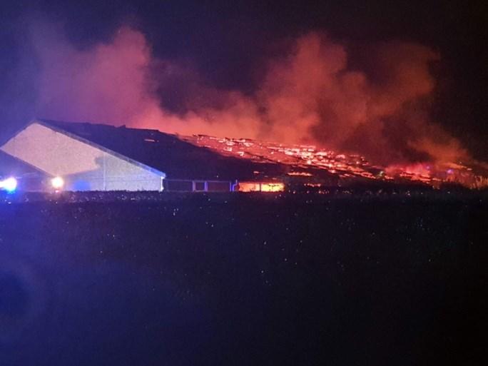 Duizend biggen en honderd zeugen sterven bij zware brand in varkensstal