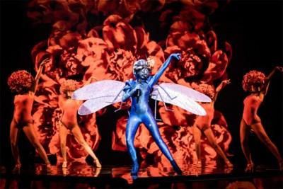 'Libelle' is ontmaskerd, maar wie is de nieuwkomer? En welke andere BV's zitten in 'The masked singer'? Alle theorieën op een rij