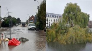 Gentse brandweer rukt bijna vierhonderd keer uit: straat wordt zwembad, bomen vallen om