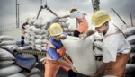 Dokwerkers zakken af naar Antwerpse gemeenteraad