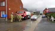 Odette veroorzaakt schade in Sint-Lievens-Houtem