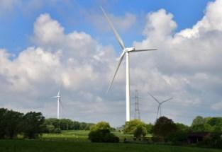 Minister geeft toelating voor gecontesteerde windturbines: gemeente en actiegroep zijn verontwaardigd