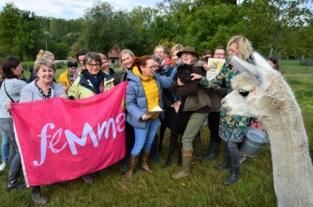 Femma Michelbeke is meter van een alpaca