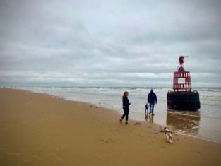 Odette sloeg hevig toe, maar liet onze stranden bijna onaangeroerd: hoe komt dat?