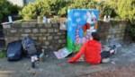 Elfjarige Merel maakt 'Tour Elentrik' rond door nutskastje te beschilderen met dieren