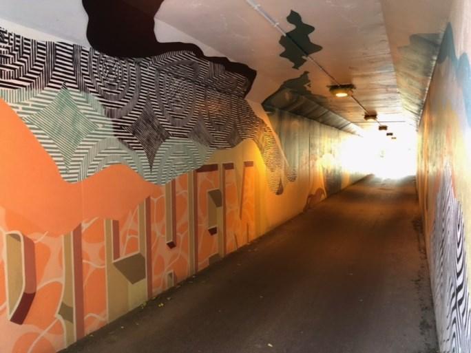 Graffiti-kunstenaars creëren pareltje in fietstunnel Berchem