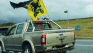 """Limburgse pick-up valt op tijdens VB-betoging met adelaar, SS-slogan en occulte symbolen: """"Maar ik ben geen neonazi"""""""