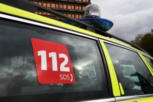 34-jarige Genkenaar gewond na kop-staartbotsing in Wiemesmeer