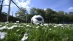 Zeven spelers en beloftentrainer Club Roeselare besmet met corona