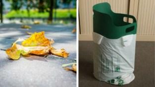 Handig: Ivago test plastic 'opscheppertje' om gevallen bladeren mee op te ruimen