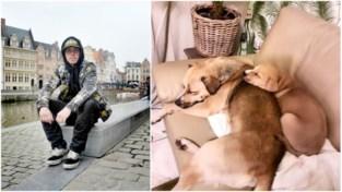 """Dakloze Michael (25) start petitie om honden terug te krijgen: """"Mufasa en Simba zijn alles wat ik heb"""""""
