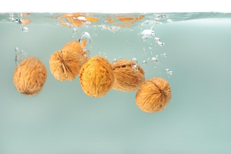 Herfst is… samen walnoten rapen. Maar moet je ze eigenlijk wassen voor je ze opeet?