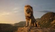 Live action 'The lion king' krijgt sequel over vroege jaren van Mufasa