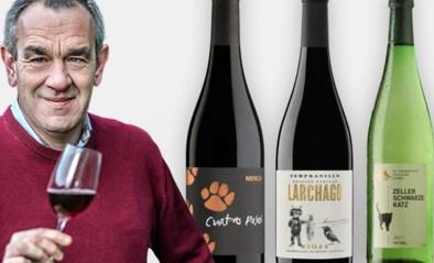De kat die miljoenen flessen doet verkopen: Alain Bloeykens proeft kattenwijn
