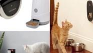 Van gps tot slimme voerautomaat: de gadget inspector tipt de leukste gadgets voor katten