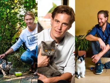 Wat eet de kat van de chef? Vier koks over de favoriete kost van hun kat