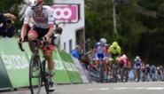 Tourwinnaar Tadej Pogacar start dan toch niet in de Ronde van Vlaanderen