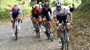 Julian Alaphilippe is meteen favoriet voor de Ronde van Vlaanderen (ook al wil hij dat niet)
