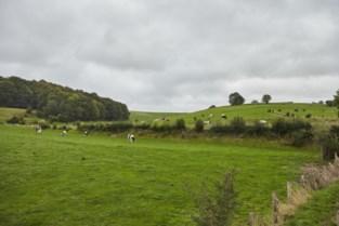 Nieuwe vergoeding voor boeren in landschapspark Voeren