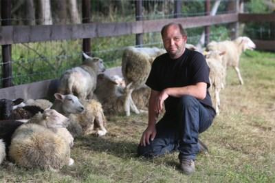 Zelfde straf in beroep voor agressieve bezieler Vogel- en Zoogdierenopvangcentrum