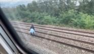 """Trein Antwerpen-Brussel moet noodstop maken door spoorloper: """"27 treinen met in totaal 136 minuten vertraging"""""""